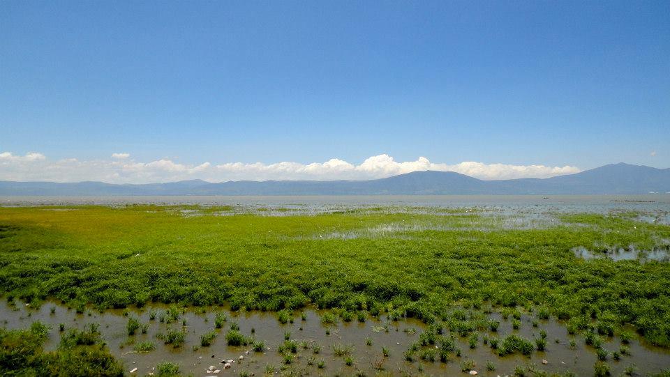 Le lac de Chapala (Jalisco)