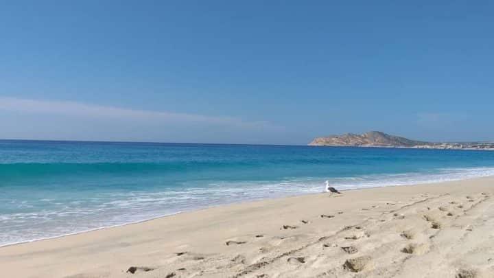 Isla Espíritu Santo (Baja California Sur)