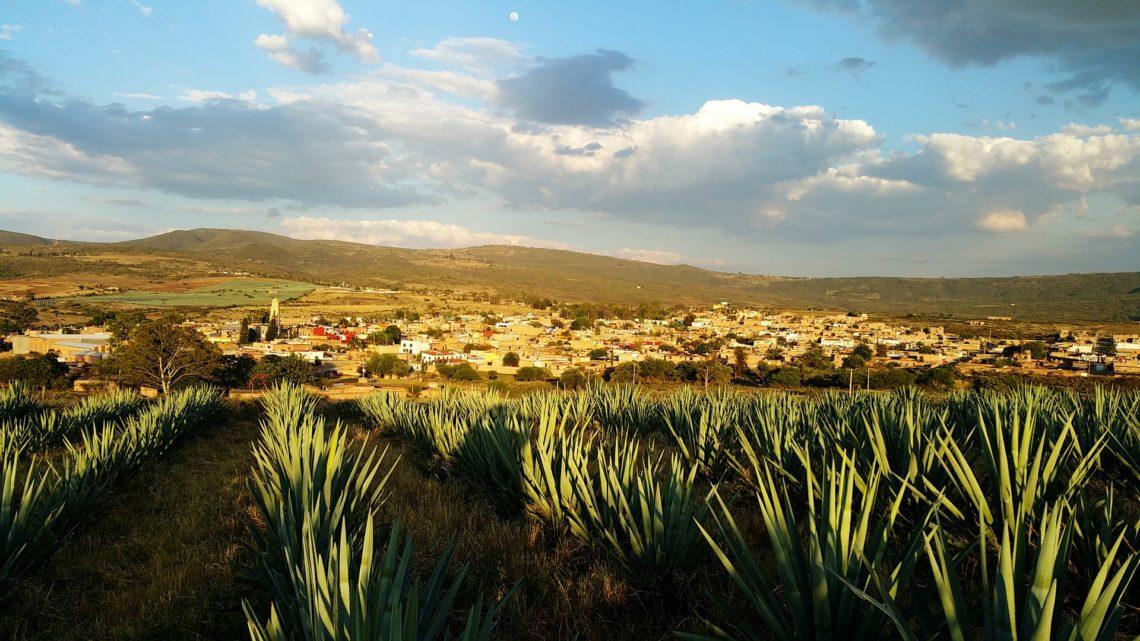 La ville de Tequila (Jalisco)