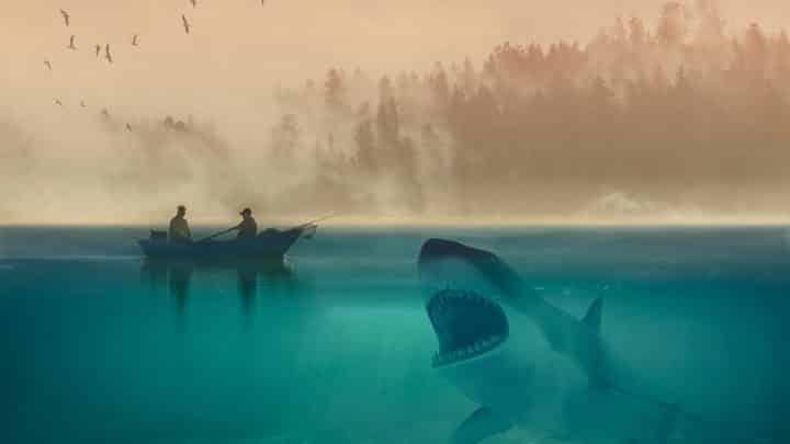 Les requins au Mexique : danger et tourisme