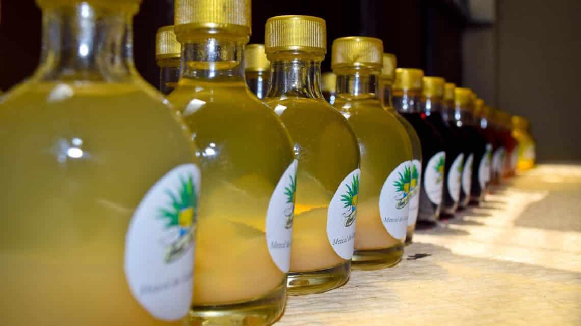 Le Mezcal – boisson typique du Mexique