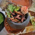 insectes comestibles au Mexique / entomophagie