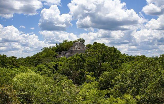 Le site Maya Calakmul