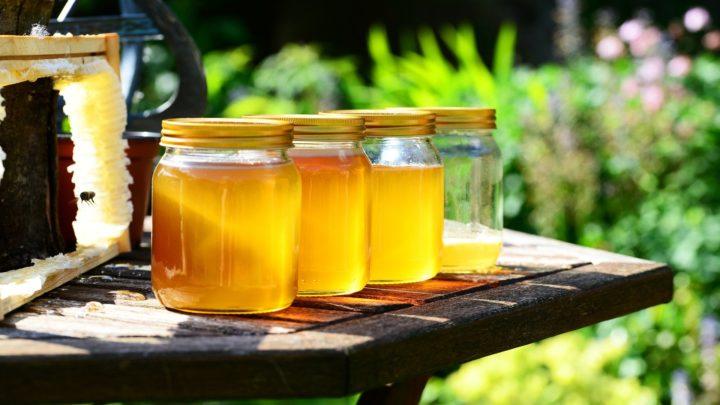 Le miel du Mexique