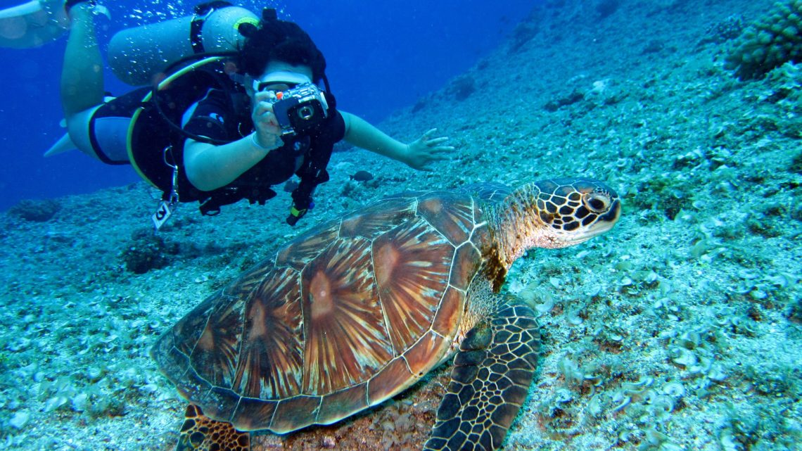 Plongée sous-marine au Mexique