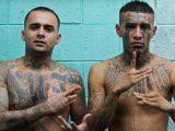 Gang Mexicain