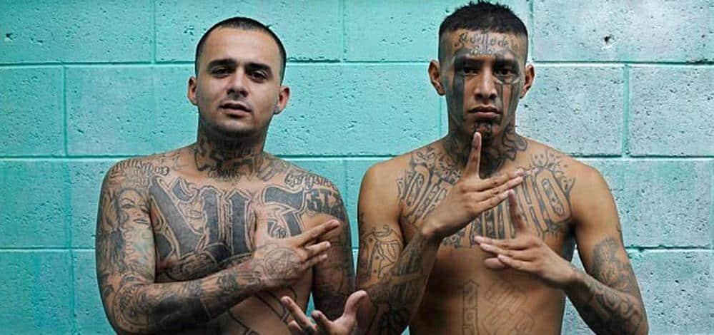 Le top 10 des gangs les plus dangereux du monde