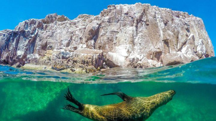 La mer de Cortez au Mexique