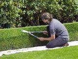 Travailler comme jardinier au Mexique