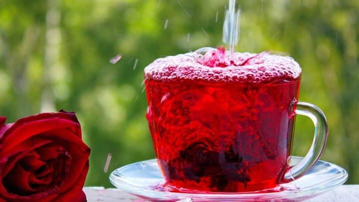 Agua de Jamaica (thé d'hibiscus) | Recette facile