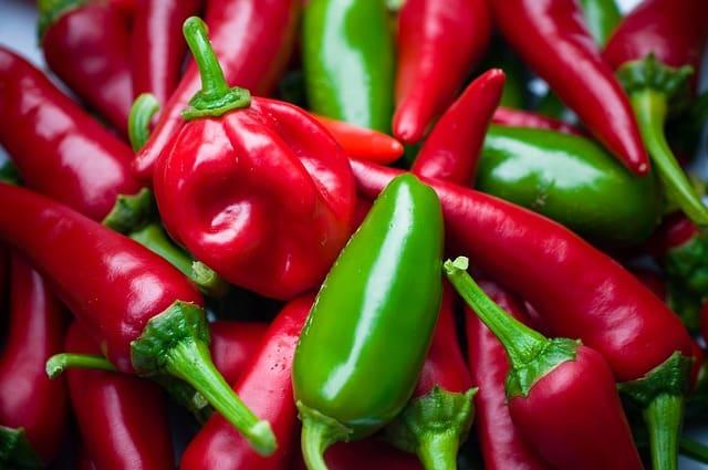 Habaneros : les piments les plus chauds du Mexique
