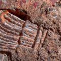 Incroyable découverte | Les vestiges du palais aztèque