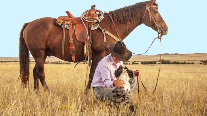 Les meilleurs westerns mexicains