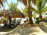 Camping Buena Onda à Puerto Escondido