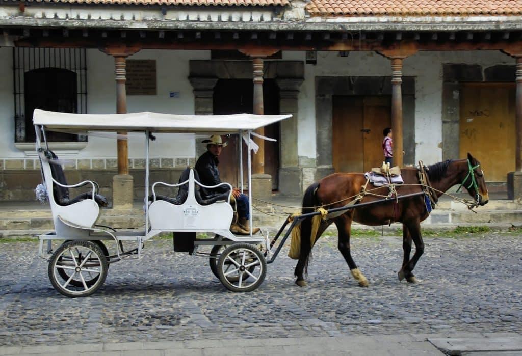 Activités Puebla Mexique