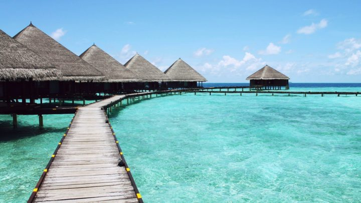Punta Maroma | Le guide