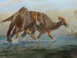 Nouvelle espèce de dinosaures découvertes au Mexique