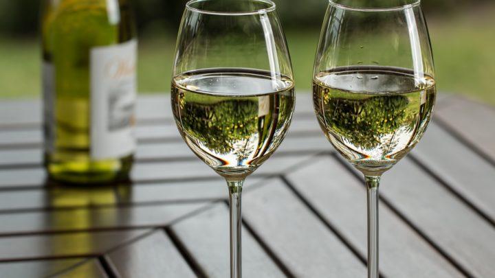 TOP 12 des meilleurs vins blancs mexicains