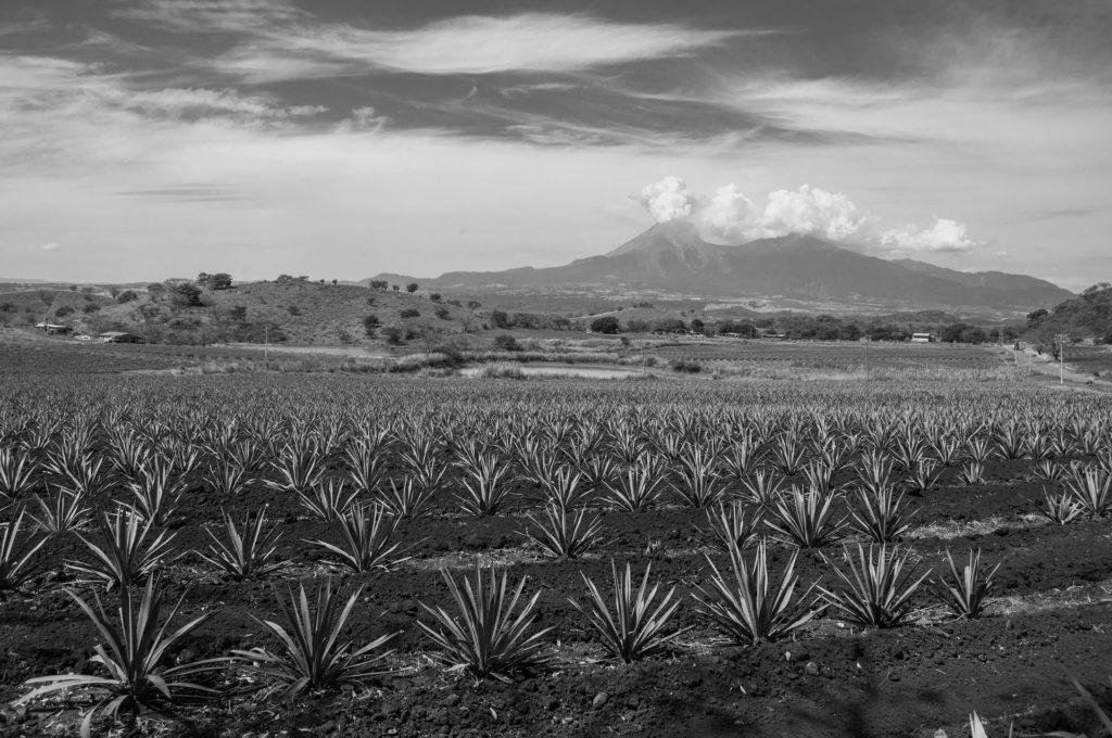 Volcan de feu de Colima Mexique