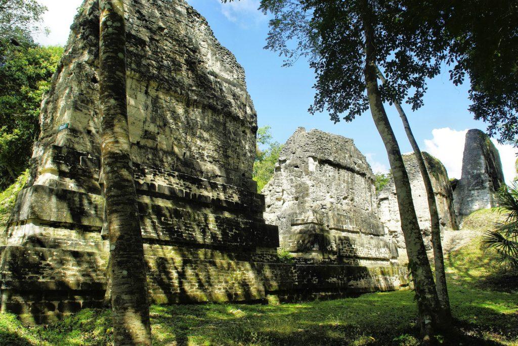 Site archéologique Tikal au Guatemala