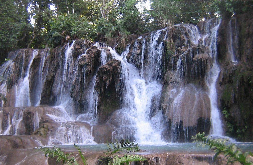 Réserve écologique de Villa Luz à Villahermosa